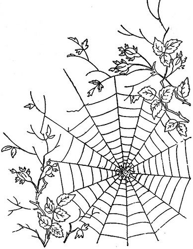 Drawn spider web cute Web Spider Spider web pattern