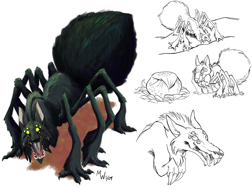 Drawn spider wolf spider Wolfspider 107 wolfspider Explore by