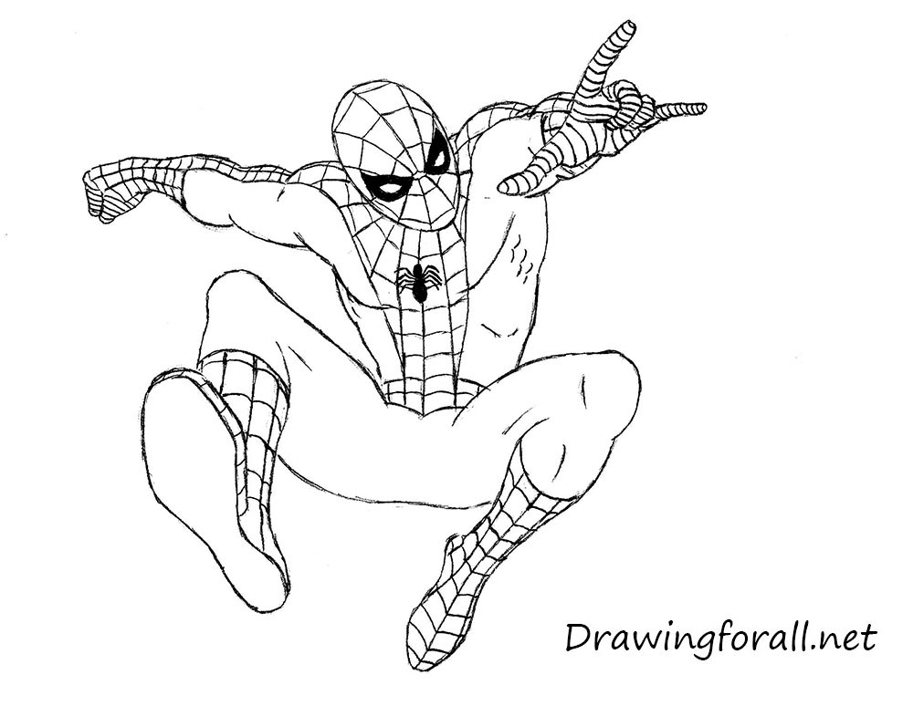 Drawn spider line drawing #1