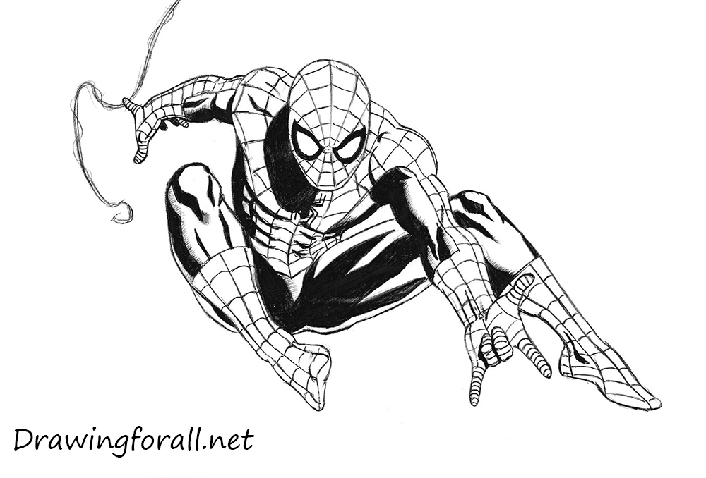 Drawn spider-man How Spider to net draw