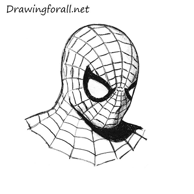 Drawn spider-man Man's net man drawing to