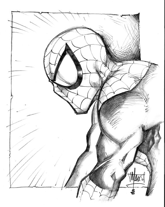 Drawn spider-man sketch  White Discover Spiderman Black