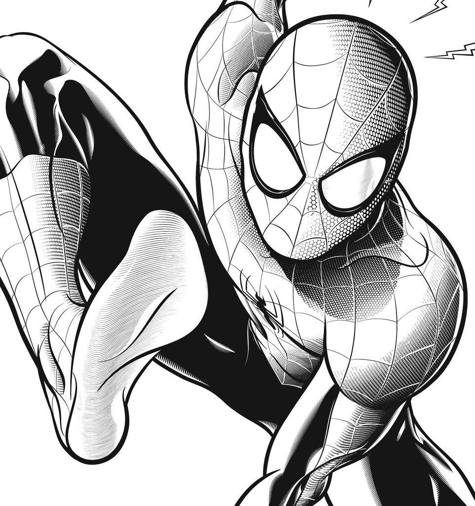 Drawn spider web spiderman Jpg Spider Spiderman Drawing Detail