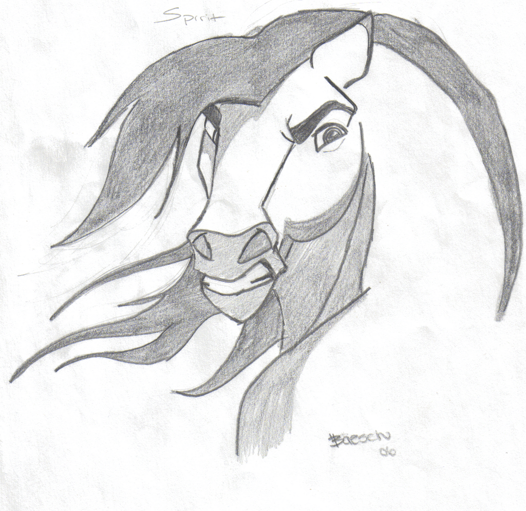Drawn horse spirit Sketches drawings Drawings and Search