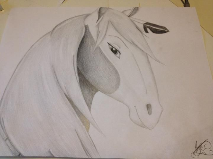 Drawn spirit easy Images Cimarron Spirit: Stallion For