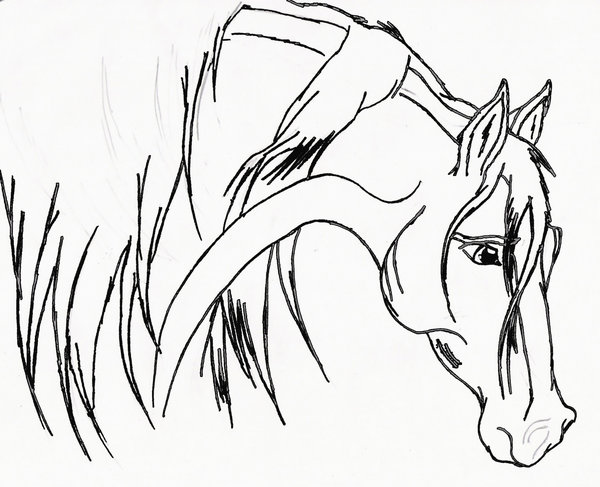 Drawn spirit mustang horse Horse Mustang photo#21 Drawing Horse