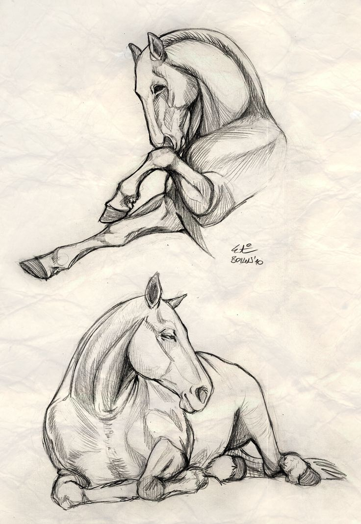 Drawn spirit simple To on Horse would two