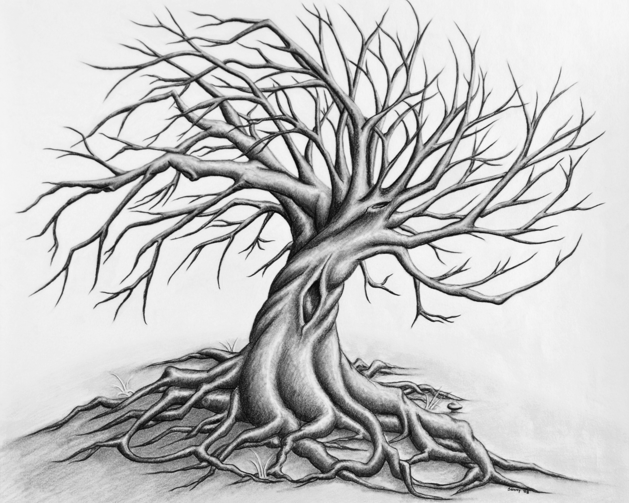 Drawn spirit twisted By by Tree Drawing by