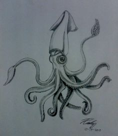Drawn squid awesome Tattoo evilforestpixley Drawing by request