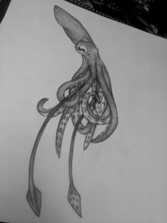 Drawn squid awesome Drawing Tattoo drawing squid Squid