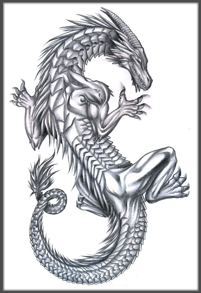 Drawn rock western dragon (and 158 images not a