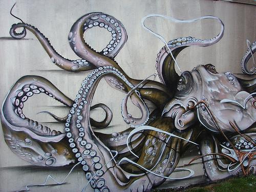 Drawn squid graffiti Octopus octopus  jpg (500×375)
