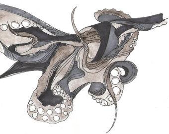 Drawn squid octopus Squid Giclee Octopus Art Accelerometer