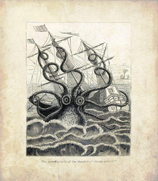 Drawn squid sea creature Vintage Nautical on Ship 25+