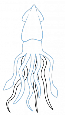 Drawn squid sea creature How How Easy by a