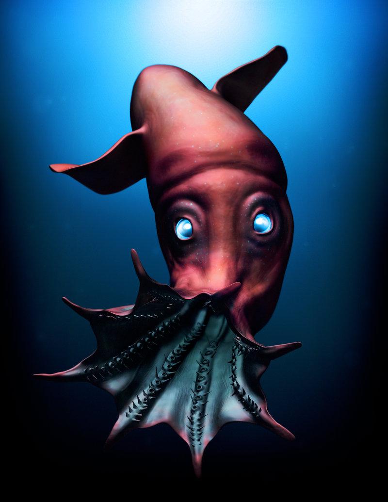 Drawn squid vampire squid Light Vampire squid Vampire Squid