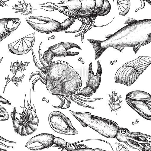Drawn squid vintage Vintage seafood Stock Vector