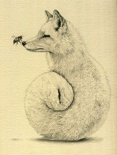 Drawn squirrel carnivore @Jeanna & more AND Fine