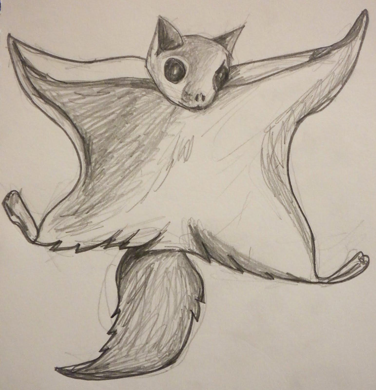 Drawn squirrel doodle (1543×1600) Riga flying+squirrel+blog  Tattoos