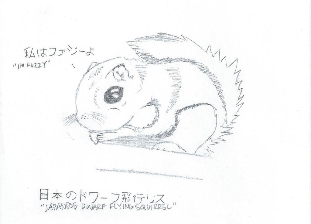 Drawn squirrel doodle DeviantArt Flying by Dwarf on