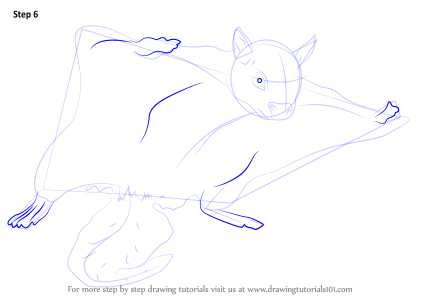 Drawn squirrel flying squirrel How 7 Squirrel (Rodents) Flying