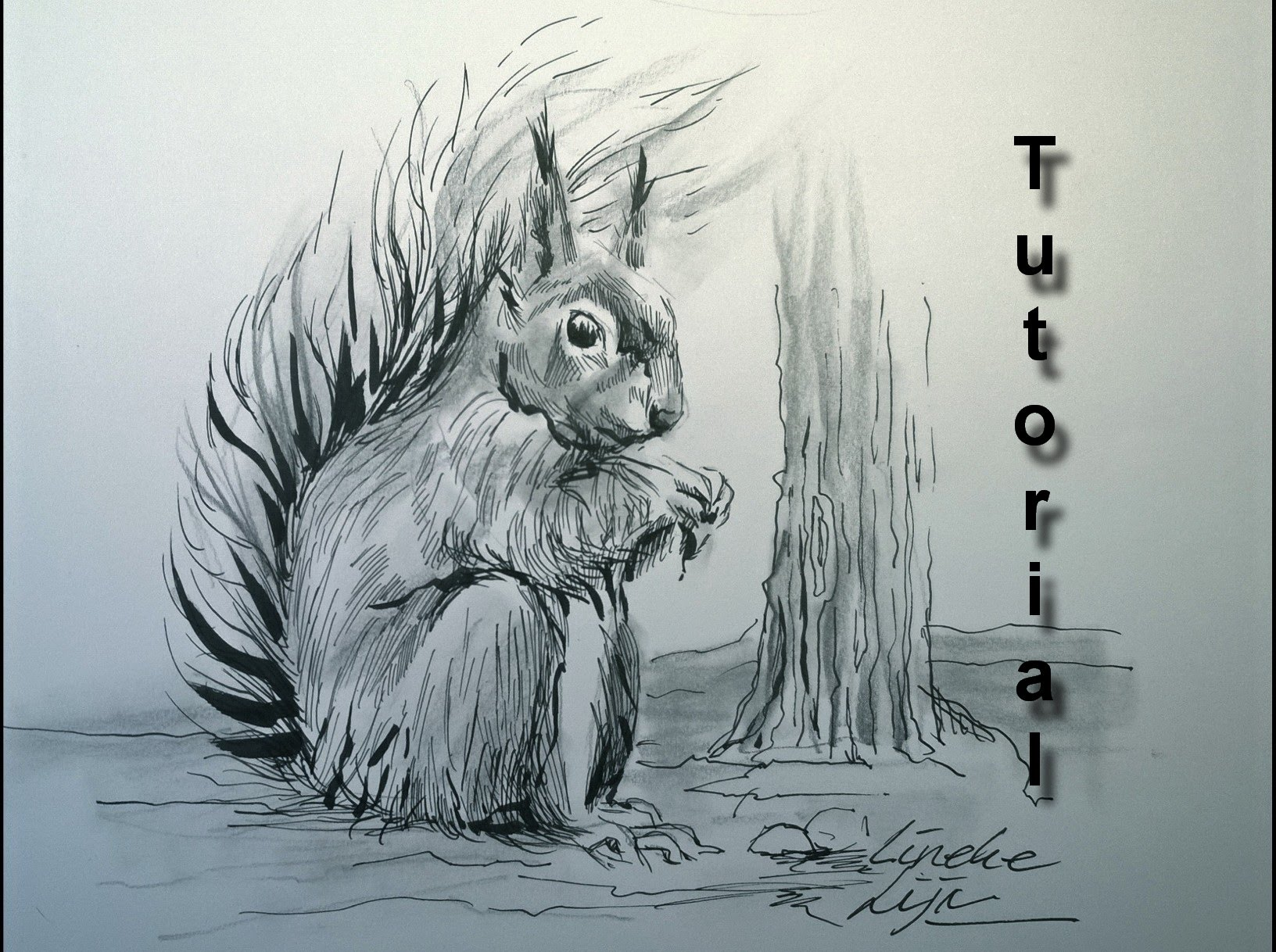 Drawn squirrel furry animal Ink a furry easy tutorial