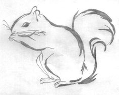 Drawn squirrel mammal  Drawing2 Draw Pinterest To