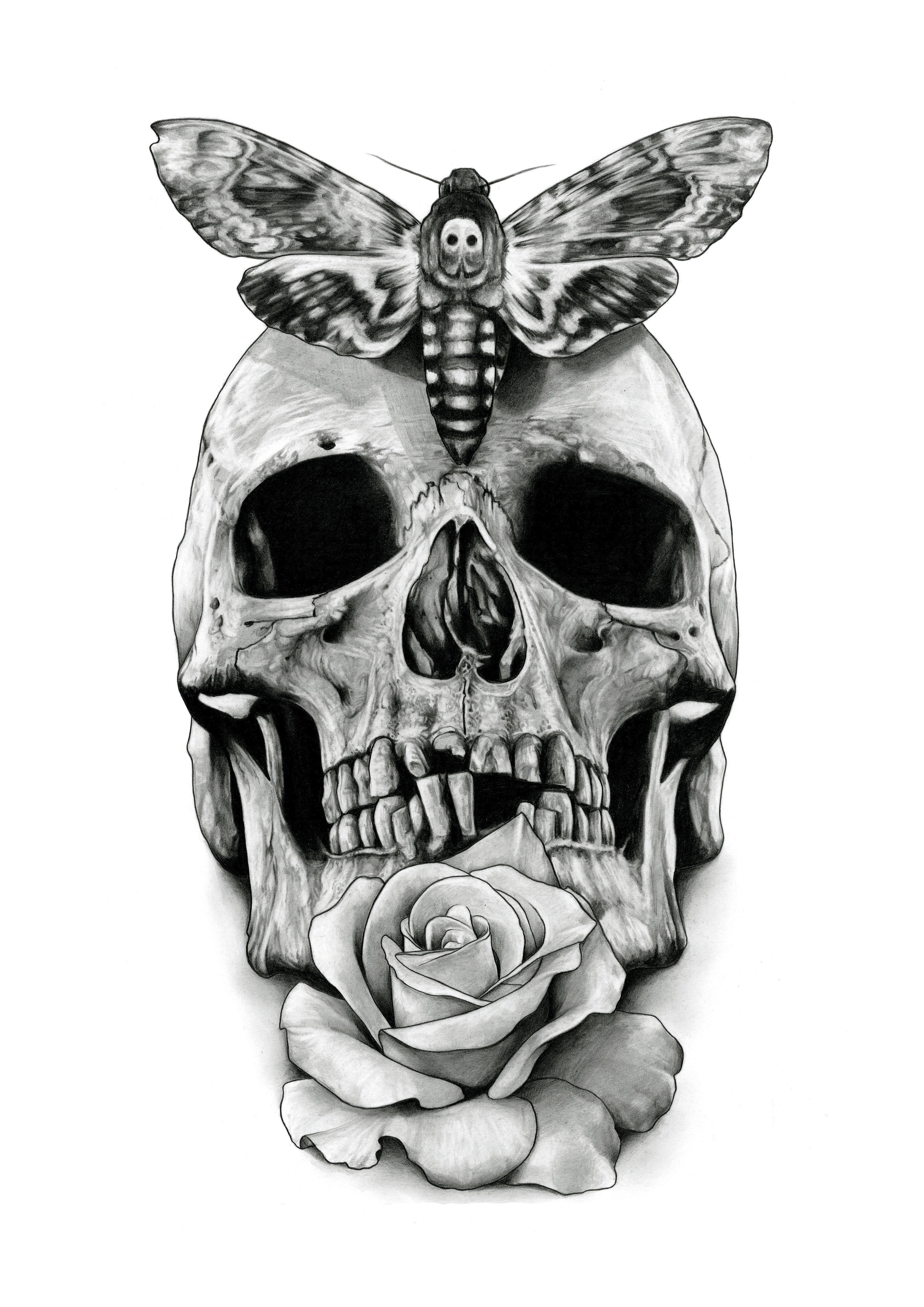 Drawn hawk dark Trends Skull Design Skull PSD