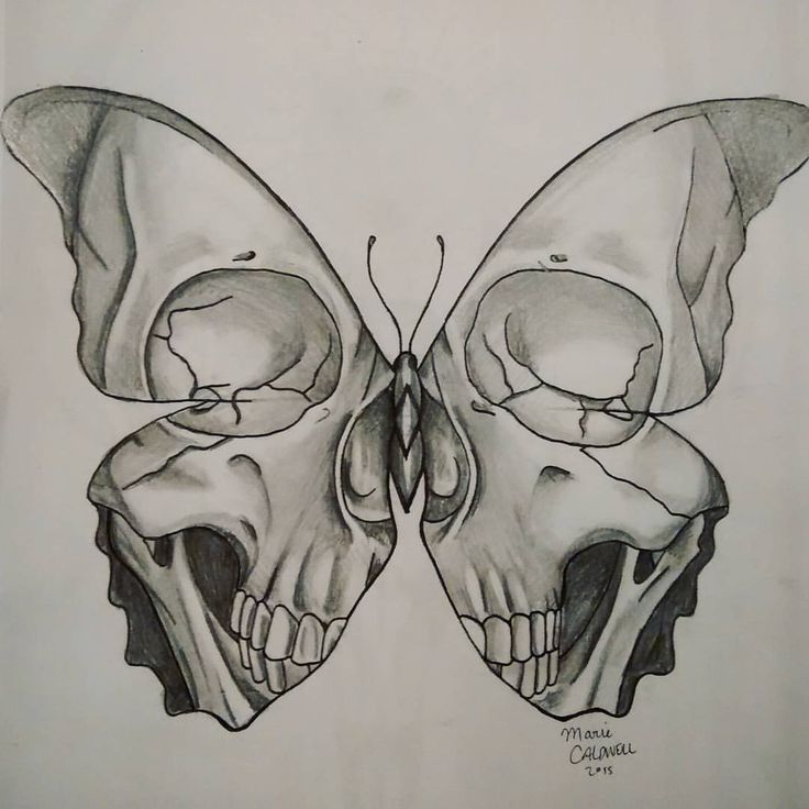 Drawn bugs skull Tattoos Pin this more Butterfly