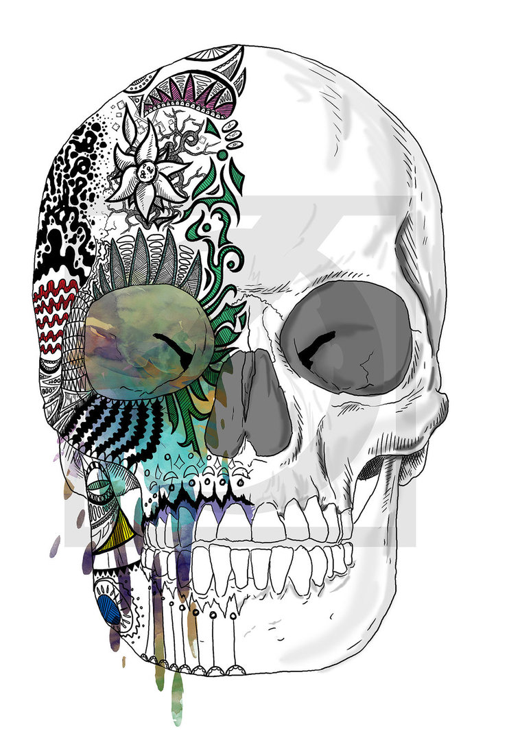 Drawn skull color Of  make skull color