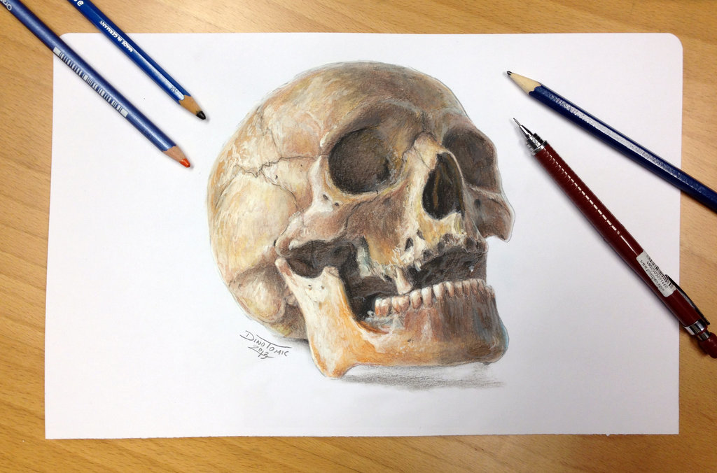 Drawn skull color By drawing drawing 2 color
