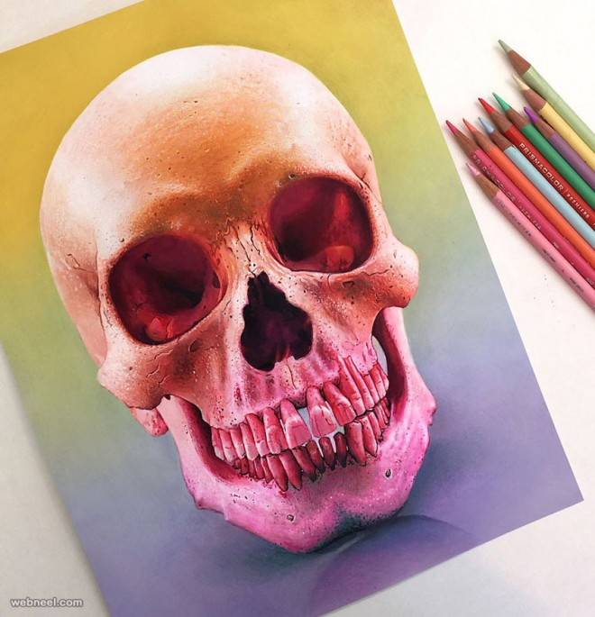 Drawn skull color Color Morgan and drawing Realistic