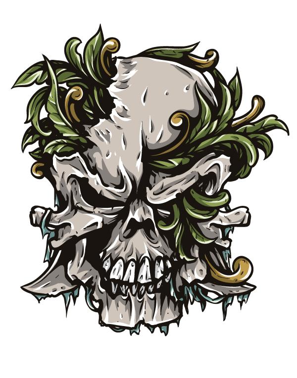 Drawn skull designer Vector Video & Tutorial Skull