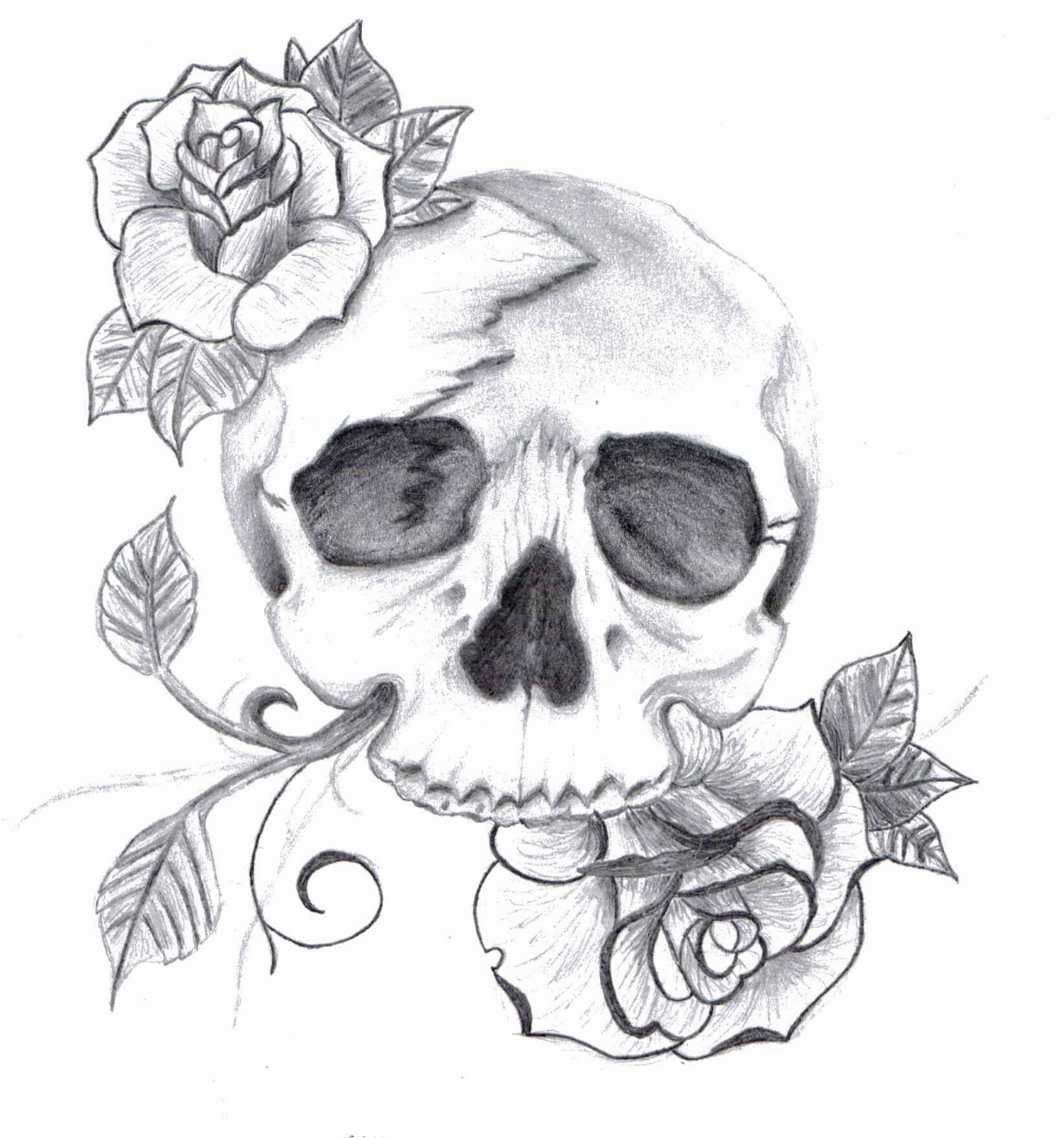Drawn skull epic Drawing  Tattoo Drawings of