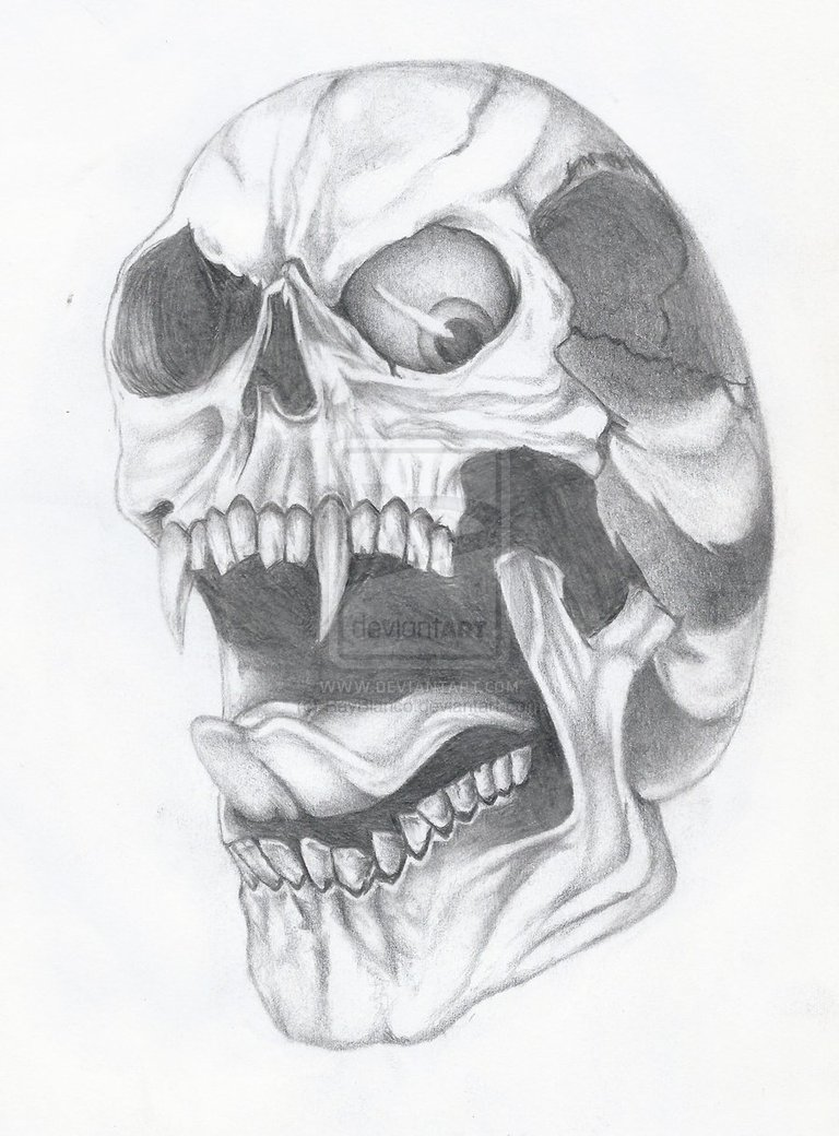 Drawn skull epic Drawings Skull Skulls Skull and