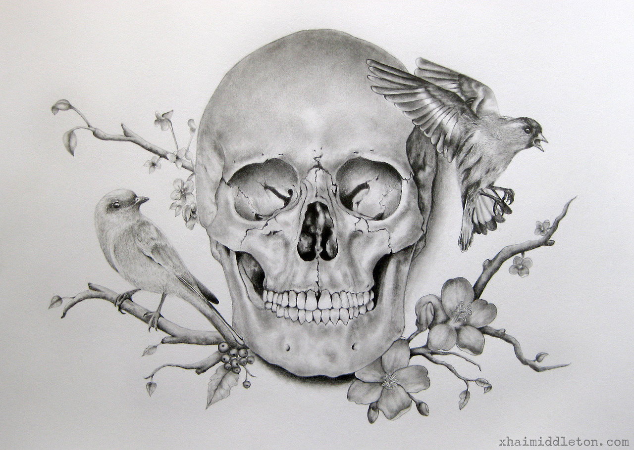 Drawn ssckull flower Google flower skull Search to