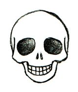 Drawn skull fun Best Pinterest to ideas drawings