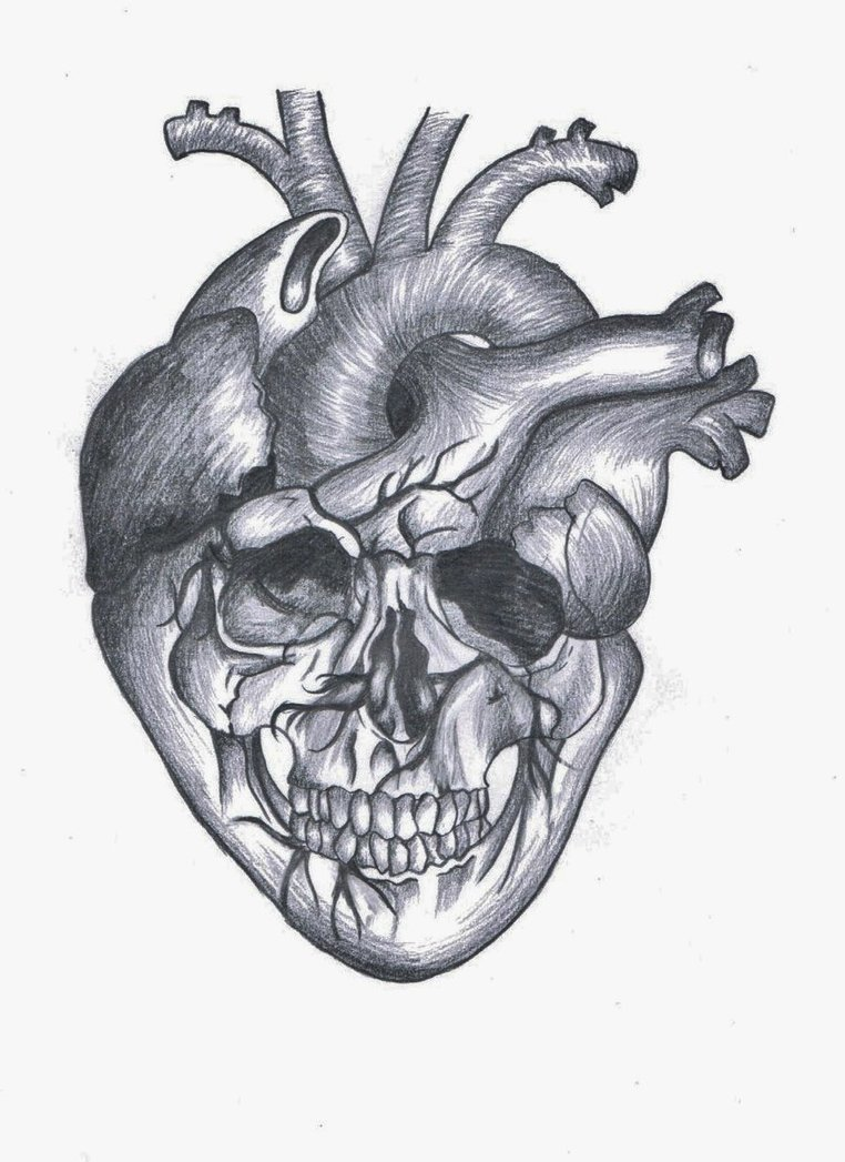 Drawn skull heart By Heart on by DeviantArt