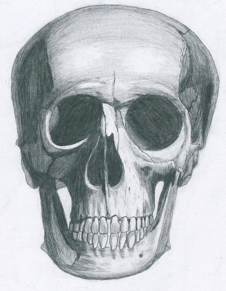 Drawn ssckull nose By by Bl1ghtmare DeviantArt drawing