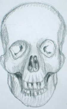 Drawn ssckull nose Drawing feel Characters come out