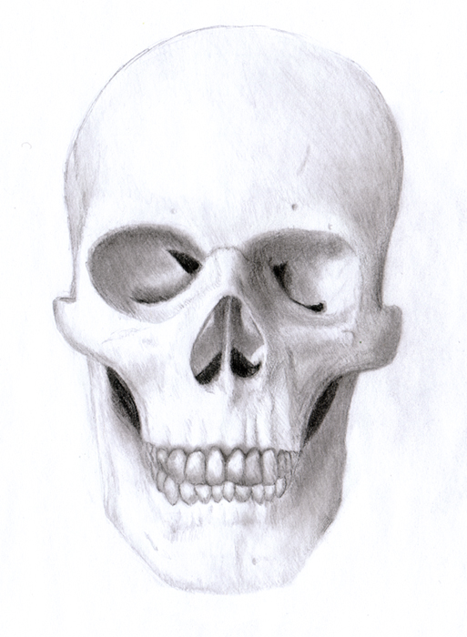 Drawn ssckull nose Drawings Eman333 Skull Drawings Skull