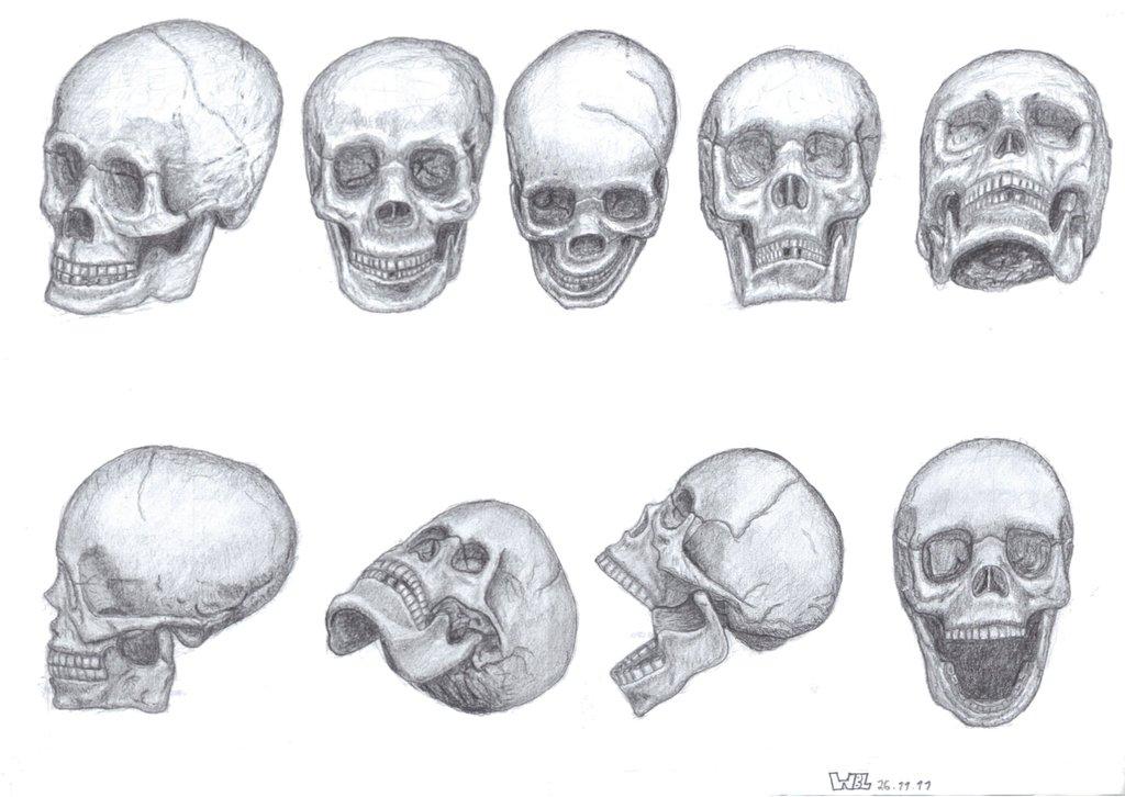Drawn skull perspective Drawings Skull ArtworkMy on paper