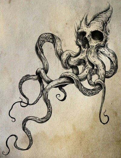 Drawn anchor skull Octopus Skull skull Best sketch