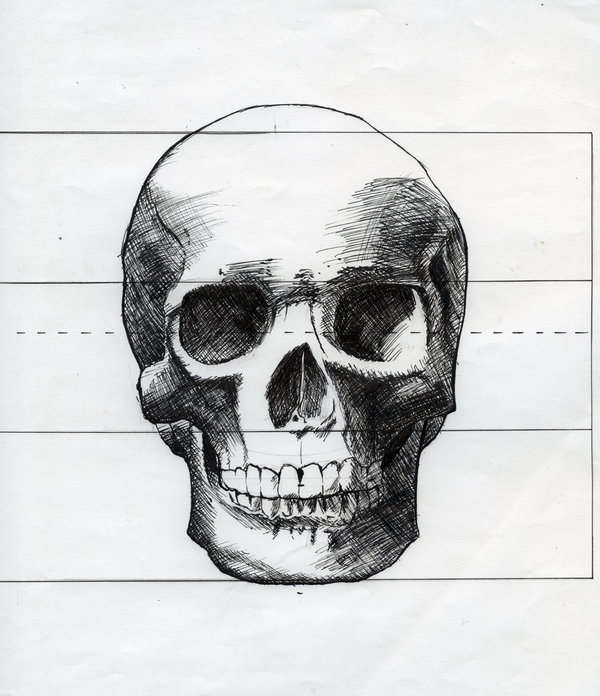 Drawn skull shaded  Clip Skull view Skull