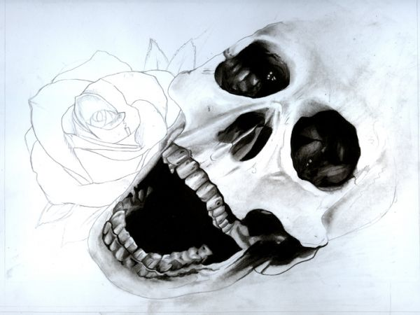 Drawn skull shaded Skull of and and shade