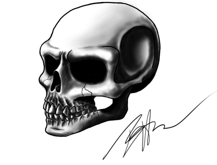 Drawn skull shaded Profile Profile Shaded by on