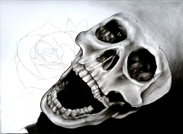 Drawn skull shaded Your paper  shading and