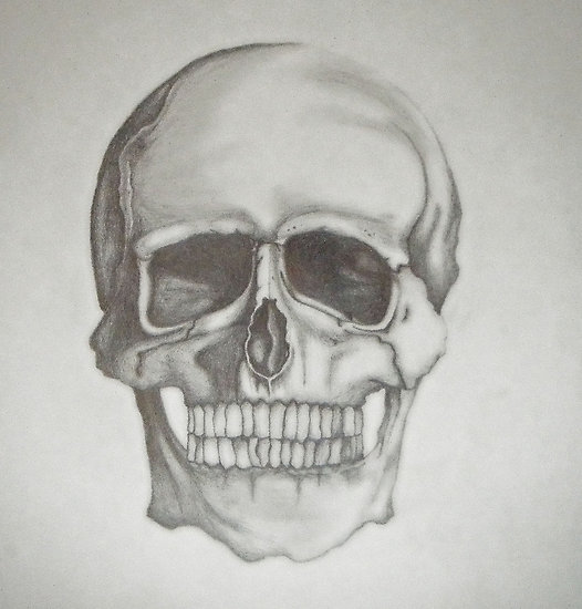 Drawn skull shaded Search Google tumblr Search Artsy