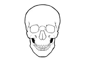 Drawn skull simple Drawings simple skull drawings drawings