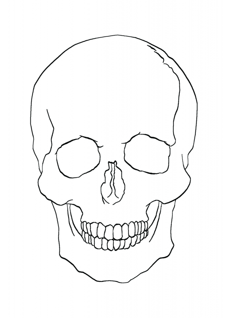 Drawn ssckull simple Drawing  Clipartsco Art Drawing